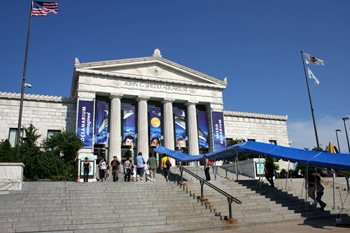 Shedd Aquarium was the gift of retail leader John G. Shedd, a protégé of Marshall Field (benefactor of the adjacent Field Museum), to the city of Chicago.