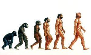 You can't write about humanism and not have this pic displayed.  Yay, Darwin.  So what?